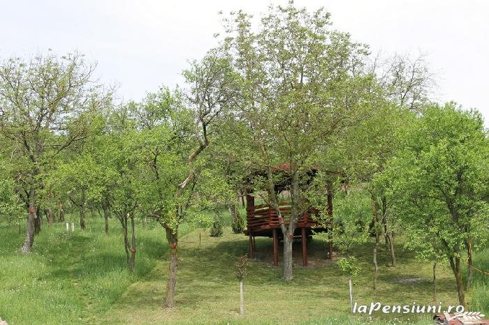 Pensiunea Agroturistica Renata - accommodation in  Apuseni Mountains (23)