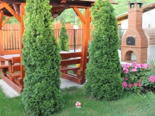 Pensiunea Agroturistica Renata - accommodation in  Apuseni Mountains (26)
