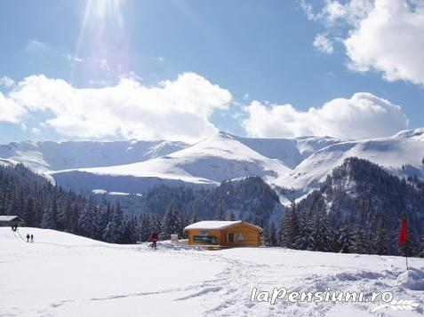 Pensiunea Alex - accommodation in  Maramures Country (Surrounding)