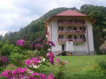 Rural accommodation at  Pensiunea Lazar