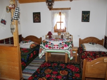 Pensiunea Turlas - accommodation in  Maramures Country (12)