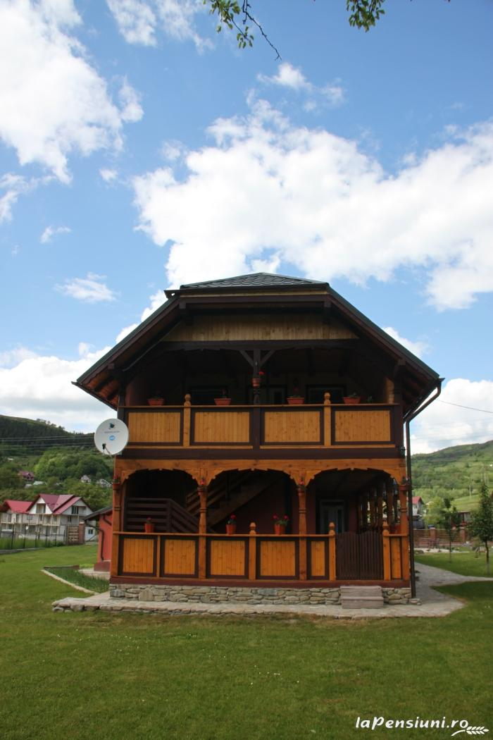 Pensiunea Turlas - accommodation in  Maramures Country (19)