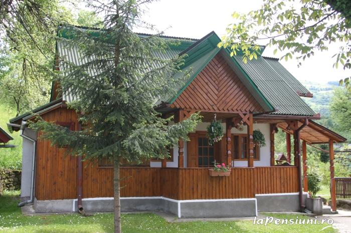 Pensiunea Turlas - accommodation in  Maramures Country (22)