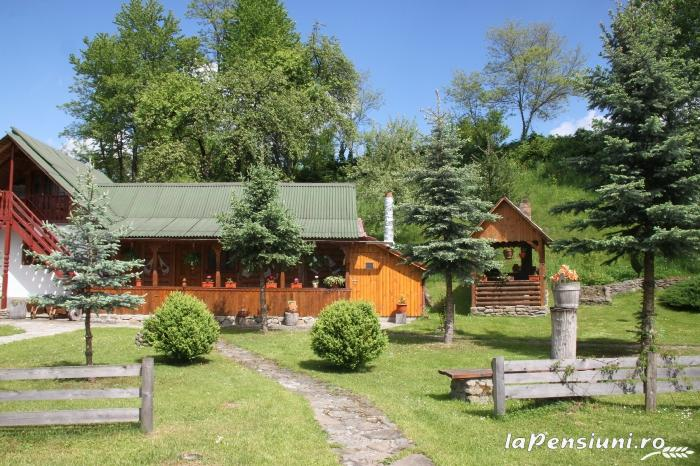 Pensiunea Turlas - accommodation in  Maramures Country (24)
