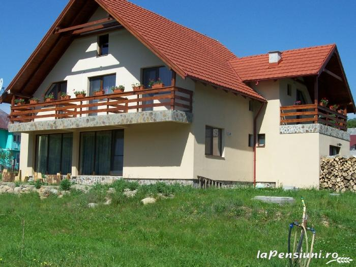Pensiunea Mara - accommodation in  Maramures Country (05)