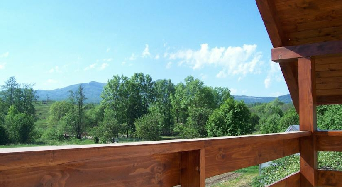 Pensiunea Mara - accommodation in  Maramures Country (06)