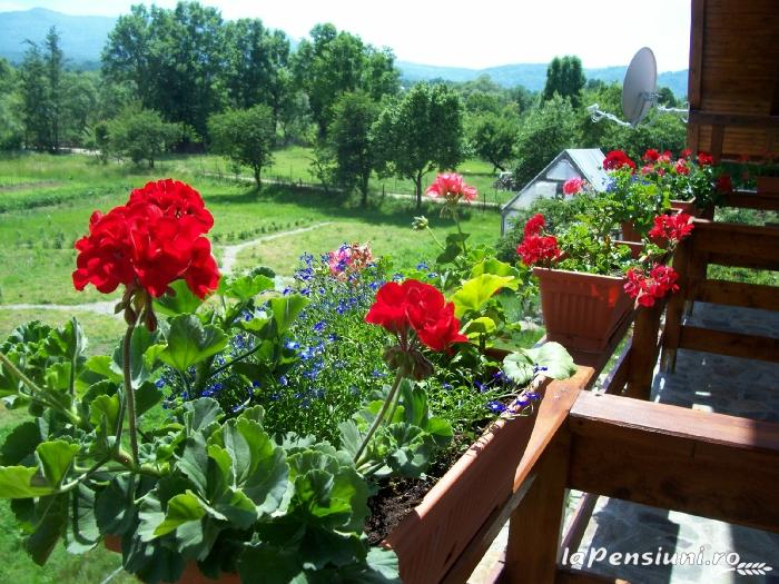 Pensiunea Mara - accommodation in  Maramures Country (10)