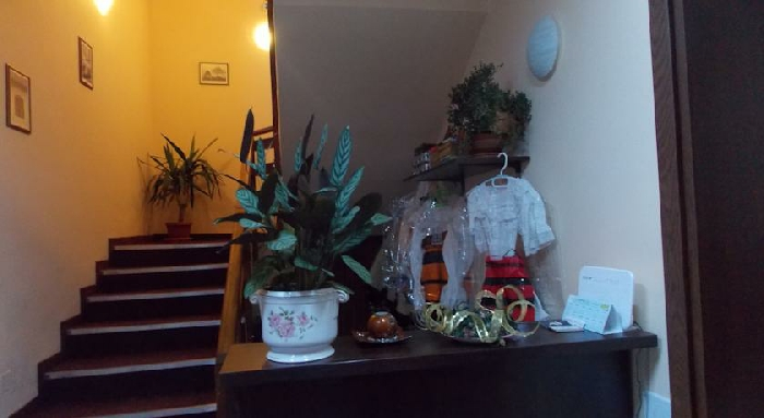 Pensiunea Mara - accommodation in  Maramures Country (15)