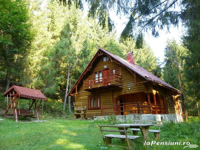 Cabana Dintre Brazi - accommodation in  Apuseni Mountains, Motilor Country, Arieseni (01)