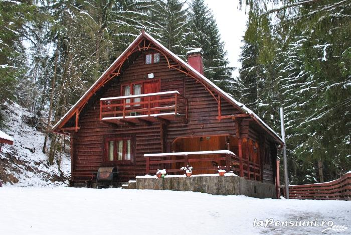 Cabana Dintre Brazi - accommodation in  Apuseni Mountains, Motilor Country, Arieseni (04)