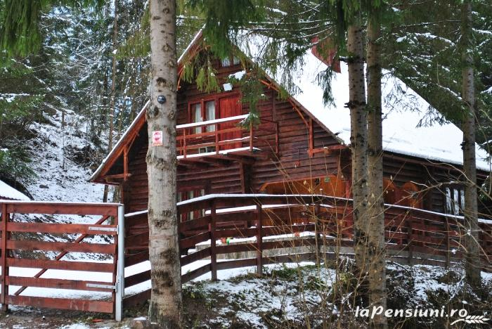 Cabana Dintre Brazi - accommodation in  Apuseni Mountains, Motilor Country, Arieseni (05)