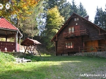 Cabana Dintre Brazi - accommodation in  Apuseni Mountains, Motilor Country, Arieseni (07)