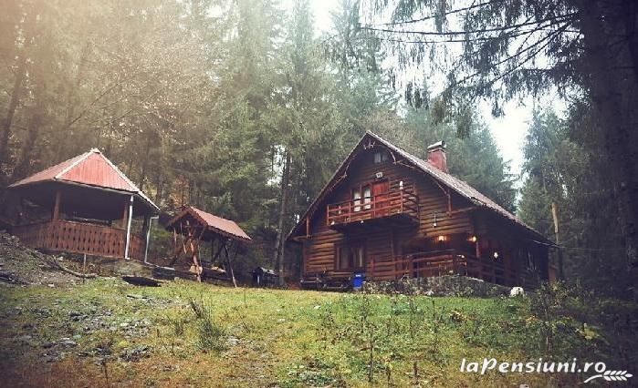 Cabana Dintre Brazi - accommodation in  Apuseni Mountains, Motilor Country, Arieseni (08)