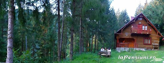 Cabana Dintre Brazi - accommodation in  Apuseni Mountains, Motilor Country, Arieseni (11)