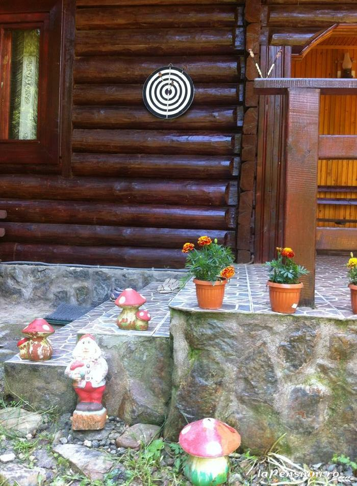 Cabana Dintre Brazi - accommodation in  Apuseni Mountains, Motilor Country, Arieseni (14)