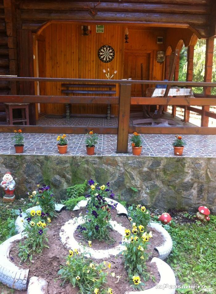 Cabana Dintre Brazi - accommodation in  Apuseni Mountains, Motilor Country, Arieseni (15)