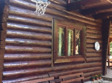 Cabana Dintre Brazi - accommodation in  Apuseni Mountains, Motilor Country, Arieseni (16)