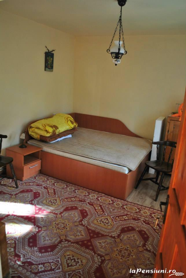 Cabana Dintre Brazi - accommodation in  Apuseni Mountains, Motilor Country, Arieseni (20)
