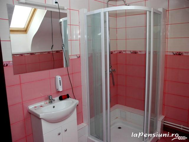 Pensiunea Dayana - accommodation in  North Oltenia (09)