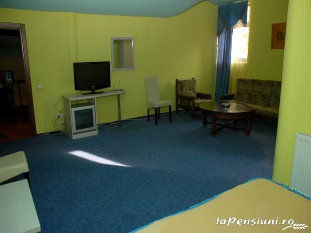 Pensiunea Dayana - accommodation in  North Oltenia (11)