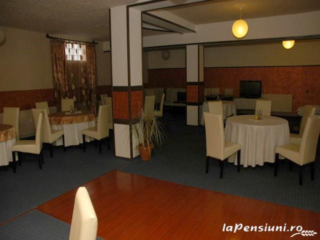 Pensiunea Dayana - accommodation in  North Oltenia (16)