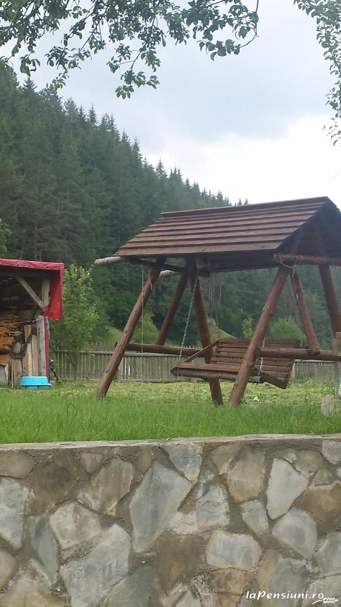 Casa Mariflor - accommodation in  Brasov Depression (07)