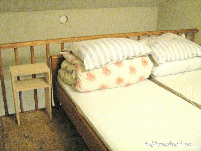 Ceteatea Axente Sever - Pensiune - accommodation in  Sighisoara (07)