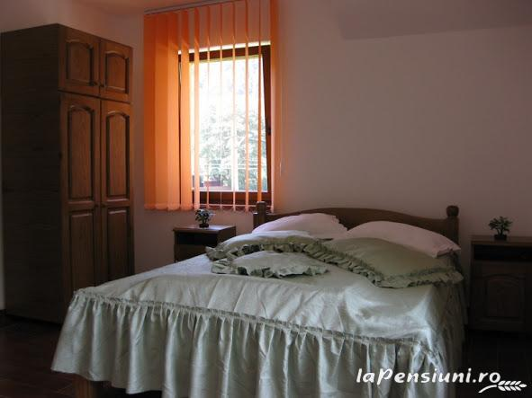 Vila Ianis Bran - accommodation in  Rucar - Bran, Moeciu, Bran (10)