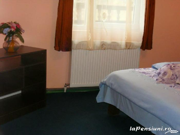 Casa Bunicilor - accommodation in  Rucar - Bran, Rasnov (11)