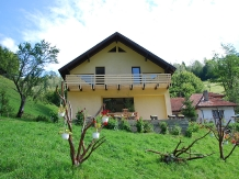 Rural accommodation at  Valea cu Calea