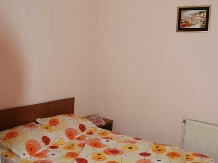 Cazare Casute Mihaieni - accommodation in  Maramures Country (17)