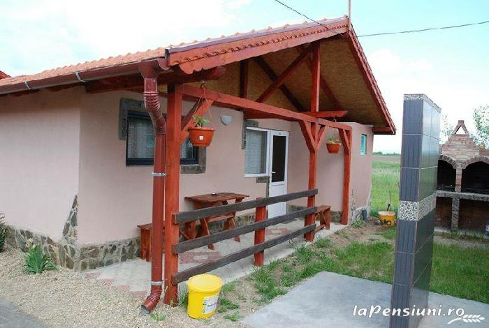 Cazare Casute Mihaieni - accommodation in  Maramures Country (25)