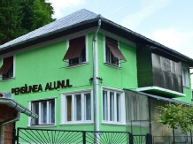 Rural accommodation at  Pensiunea Alunul