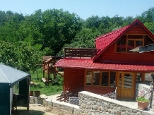 Pensiunea Magdalena - accommodation in  Muscelului Country (01)