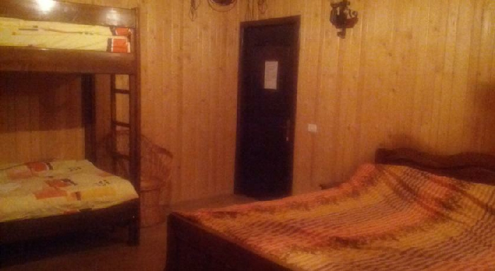 Pensiunea Magdalena - accommodation in  Muscelului Country (13)