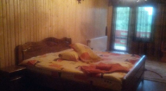 Pensiunea Magdalena - accommodation in  Muscelului Country (14)