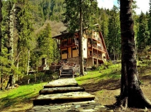 Rural accommodation at  Vila Balea Transfagarasan