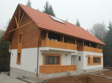 Casa Arnica Montana - accommodation in  Apuseni Mountains, Motilor Country, Arieseni (11)