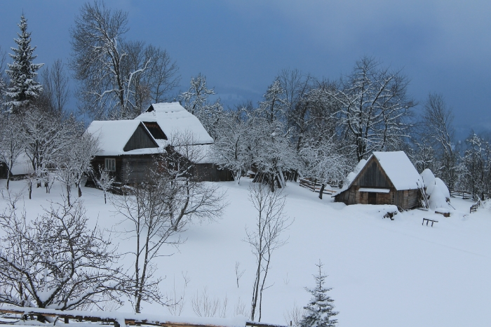 Casa Arnica Montana - accommodation in  Apuseni Mountains, Motilor Country, Arieseni (43)