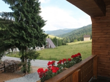 Casa Arnica Montana - accommodation in  Apuseni Mountains, Motilor Country, Arieseni (46)