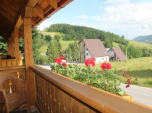 Casa Arnica Montana - accommodation in  Apuseni Mountains, Motilor Country, Arieseni (47)