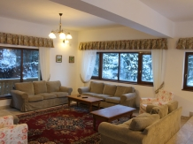 Casa Arnica Montana - accommodation in  Apuseni Mountains, Motilor Country, Arieseni (55)
