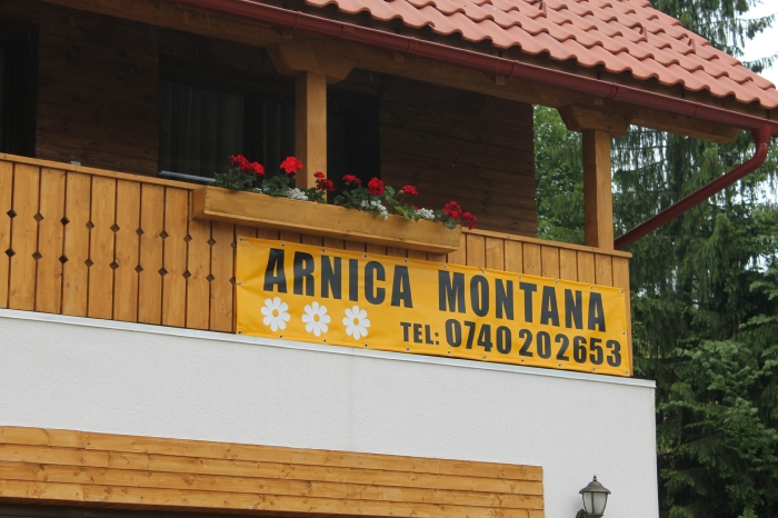 Casa Arnica Montana - accommodation in  Apuseni Mountains, Motilor Country, Arieseni (64)