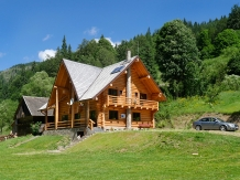 Rural accommodation at  Pensiunea Larix