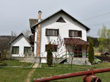 Rural accommodation at  Cabanele Trei Ursuleti
