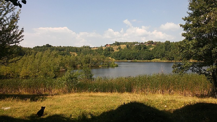 Pensiunea Lacul Zanelor - accommodation in  Buzau Valley (12)