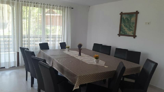Pensiunea Daiana - accommodation in  Bistrita (04)
