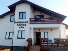 Rural accommodation at  Pensiunea Sophia