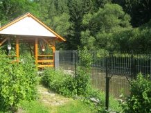 Casa Lia - accommodation in  Apuseni Mountains, Motilor Country, Arieseni (11)