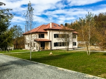 Rural accommodation at  Pensiunea Negoiu